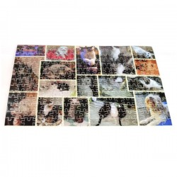 Puzzle 252 Pièces personnalisé