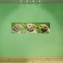 Sticker HD photo Panoramique personnalisé [x]