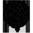 Sticker Arbre sur mesure [x]