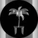Sticker Palmier sur mesure