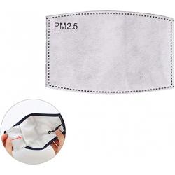 Filtre de remplacement à charbon actif PM 2.5 pour masque tissu de protection